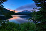 Tree Framed Trillium Lake Reflection  Summer Mount Hood Oregon