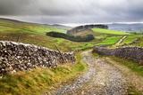 Rural Landscape in North Yorkshire  England
