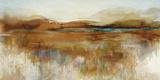 A Moorland Ramble