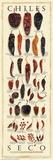 Chiles Seco Reproduction d'art par Mark Miller