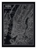 New York City  1895