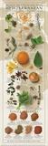 Regional Spices - Mediterranean Reproduction d'art par Ziegler/Keating
