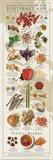Regional Spices - Southeast Asia Reproduction d'art par Ziegler/Keating