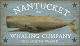Nantucket Whale