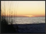 Sunset on Sanibel Island  Gulf Coast of FL