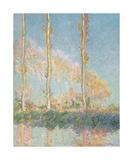 Poplars  1891