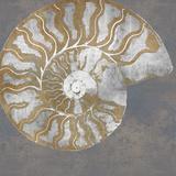 Le Nautilus I Giclée par Mark Chandon