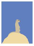 Meerkat Reproduction d'art par Jorey Hurley