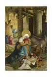 The Nativity  1507-10