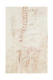 Fragmentary Copy  1710-15