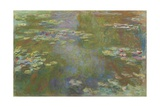 Water Lily Pond  1917-19