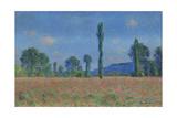 Poppy Field  Giverny  1890-91