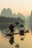 Cormorant Fisherman on Li River at Dawn  Xingping  Yangshuo  Guangxi  China