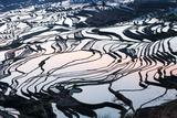 Rice Terraces in Yuanyang  Yunnan  China