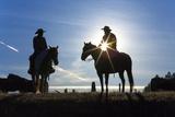 Cowboys on Horses  Sunrise  British Colombia  Canada