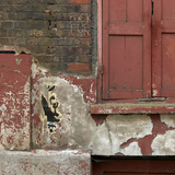 Shuttered Window and Peeling Paint  Spitalfields  London