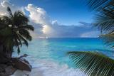 Tropical Beach  La Digue  Seychelles