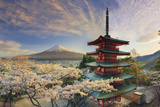 Japan  Yamanashi Prefecture  Fuji-Yoshida  Chureito Pagoda  Mt Fuji and Cherry Blossoms