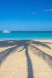 Antigua  Jolly Bay Beach  Palm Trees Casting Shadows