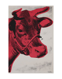 Cow Poster  1976