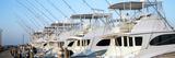Yacht Charter Boats at a Harbor  Oregon Inlet  Outer Banks  North Carolina  Usa