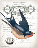 French Swallow II