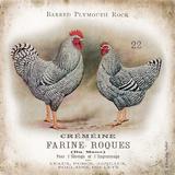 Chicken Pair II