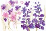 Spring Garden IX