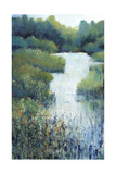 Whispering Creek