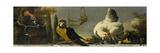 Birds on a Balustrade