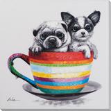 Teacup Pups
