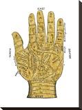 Vintage Palmistry