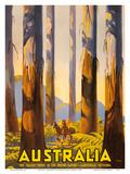 Australia - The Tallest Trees in the British Empire - Marysville  Victoria