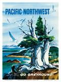 Pacific Northwest - Go Greyhound (Greyhound Bus Lines)