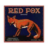 Red Fox Brand - Orange  California - Citrus Crate Label