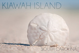 Kiawah Island  South Carolina - Sand Dollar and Beach