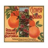 Clover Brand - Redlands  California - Citrus Crate Label