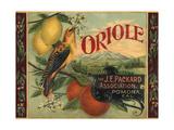 Oriole Brand - Pomona  California - Citrus Crate Label