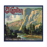 El Capitan Brand - San Dimas  California - Citrus Crate Label