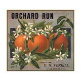 Orchard Run Brand - California - Citrus Crate Label