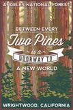 Angeles National Forest - Wrightwood  California - John Muir
