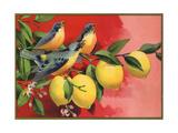 Birds on Lemon Branch - Citrus Crate Label