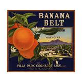 Banana Belt Brand - Villa Park  California - Citrus Crate Label