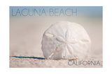 Laguna Beach  California - Sand Dollar and Beach