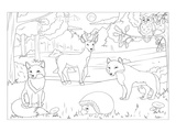 Forest - Kids Design Coloring Art