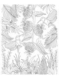 Hummingbirds & Flowers Design Coloring Art Poster à colorier