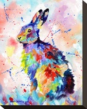 Color Hare