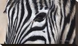Zebra Eyes