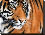 Tiger Crop