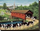 Cows in West Arlington